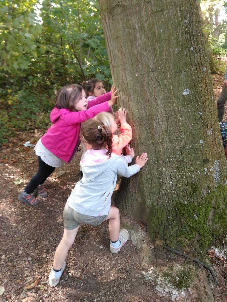 Even een boom terug rechtzetten...
