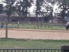 Zwanenhof moet erf en boerderij van achterburen  in Zenderen aankopen