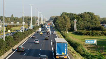 Steeds meer spitsstroken in Vlaanderen, maar niet iedereen gebruikt ze: zo moet het wel