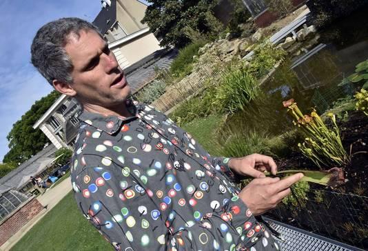 """Ces plantes carnivores, originaires d'Amérique du Nord et qui n'ont donc """"jamais vu de frelons avant"""", ont """"inventé un piège très sélectif"""", se réjouit Romaric Perrocheau, directeur du Jardin des plantes de Nantes"""