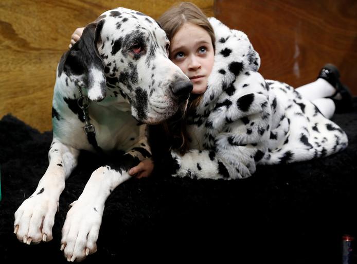 Claudia Kelleway ligt gezellig naast haar Deense dog Ruby tijdens de eerste dag van de Crufts Dog Show in Birmingham. Foto Darren Staples