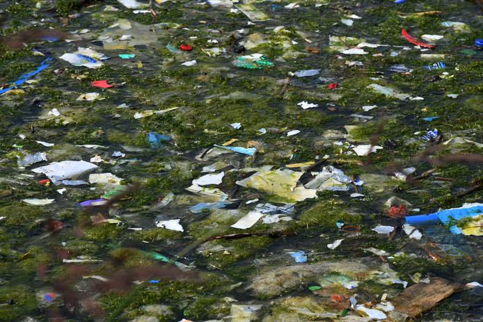 Vervuiling in een plas in de uiterwaarden ter hoogte van de Rijnbandijk in Eck en Wiel.