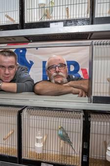 Vogelvereniging Zang en Kleur houdt na tien jaar weer een tentoonstelling