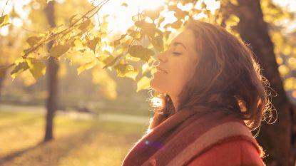 """November was """"zeer abnormaal zonnige maand"""""""
