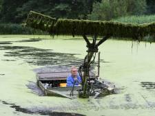 Vissen in vieze Graafse vijver leggen massaal het loodje
