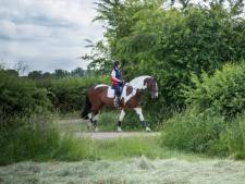 'Ruiterommetje' in de Maasheggen, verder wil Boxmeer niet gaan
