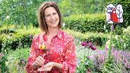 Maak van jouw tuin of terras de beste zomerplek van Vlaanderen: Laurence Machiels geeft tips