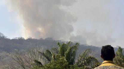 Colombia vraagt om internationale hulp bij bestrijding bosbranden - Bolivia zet Boeing Supertanker in