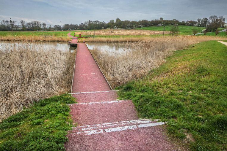 """""""Kortrijk heeft héél veel prachtige wandellocaties, en daar is de fervente wandelaar in mezelf heel blij mee. Ik vind het bijvoorbeeld fantastisch wandelen in Bellegem, Kooigem of aan de Marionetten/Libel."""""""