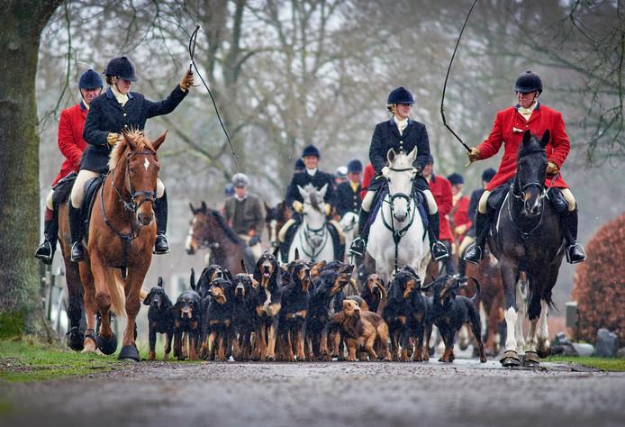 Slipjacht met honden en ruiters vanuit manege de Drie Linden te Zeeland. Fotograaf: Van Assendelft/Jeroen Appels