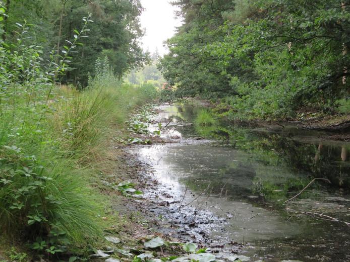 Als regen uitblijft, staat ook de Bredase Kogelvanger droog.