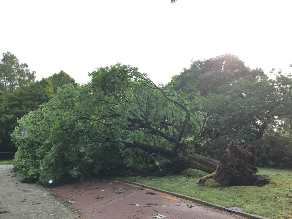 Hatertseveldweg Nijmegen