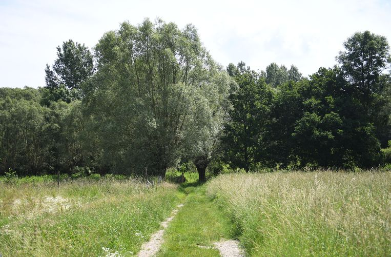 De kleren van jogster Eliska (17) werden in Silsombos in Erps-Kwerps opengesneden.