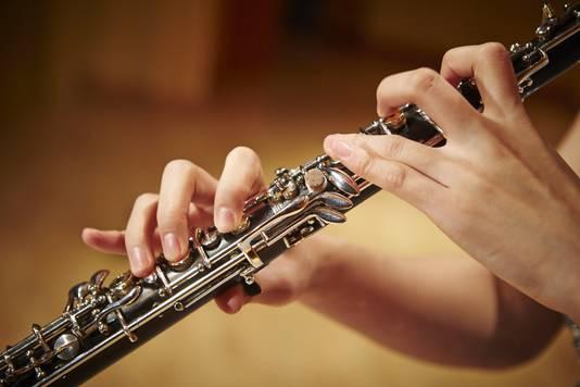 De hobo is een blaasinstrument dat prettig in het gehoor ligt, maar de straatnaam Hobo is een splijtzwam in de gemeente Zaanstad.