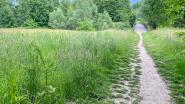 Code oranje voor brandgevaar in bos- en natuurgebieden in Vlaams-Brabant
