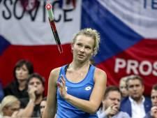 Tsjechische tennissters verslaan Verenigde Staten in finale Fed Cup