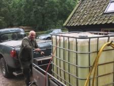 Brabantse natuur lijdt onder droogte: verhongerende vogels, en geen paarse maar bruine heide