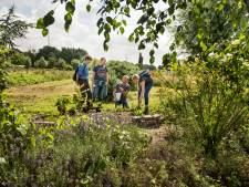 Nieuwe ontmoetingstuin bezichtigen tijdens Open Tuindag in Hoog Zwaluwe