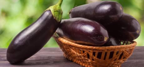 Nu is een goed moment om aubergine te eten