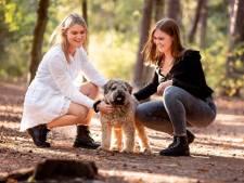 Zusjes Mees en Roos doen hartverscheurende oproep: 'Wie heeft onze hond doodgeschopt?'