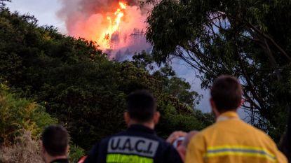 Gran Canaria opnieuw getroffen door bosbranden: dorp en luxehotel ontruimd