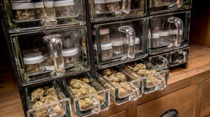 Izegem verbiedt cannabiswinkels in uitgaansbuurt en bij scholen