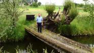 Noodbrug over de Markrivier afgebroken