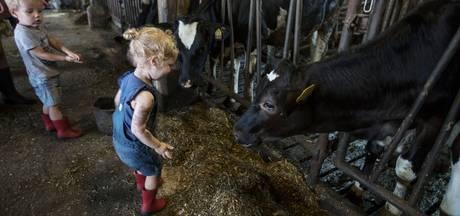 Kinderopvang bij de boer groeit