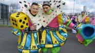 FOTOREEKS carnavalsstoet Ninove