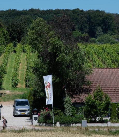 Wijnbouwcentrum boos op boze horecakoepel vanwege horeca-activiteiten in buitengebied