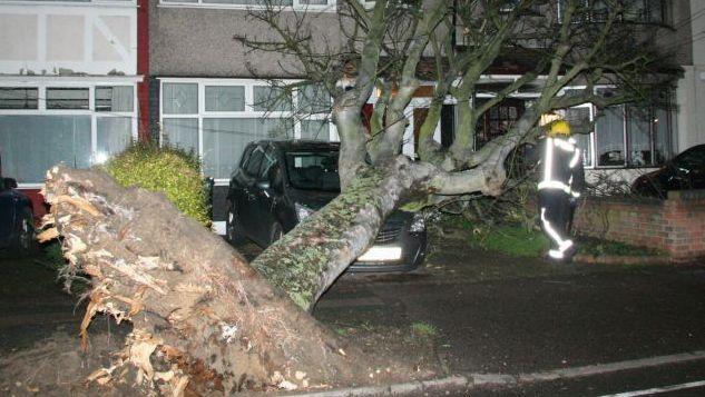 Ook in Engeland zorgde de storm voor omgewaaide bomen.