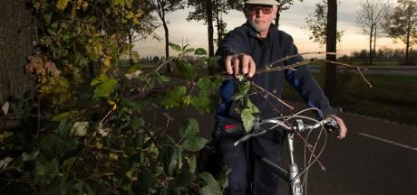 Henk Westerveld is helemaal klaar met overhangende takken