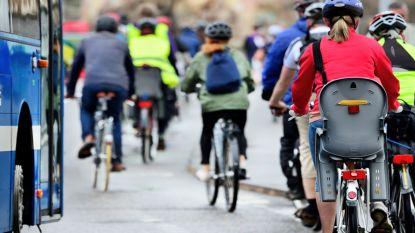 QUIZ: Hoe voorzichtig ben jij voor kwetsbare weggebruikers?