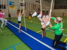 Sportcoaches als spin in het web van bewegend Hilvarenbeek
