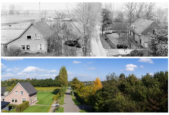 Aanschot in 1979 en 2017. Op de rand tussen het weitje en de bloemenakker zou de Castiliëlaan voor nieuwbouwwijk Blixembosch in Eindhoven het gehucht hebben moeten doorsnijden. De foto uit 2017 is gemaakt door Maikel van den Wildenberg en Arne Olivier, met een drone.