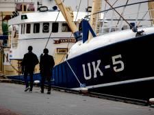 Besluit Brussel doffe klap voor Urker pulsvisserij, vrees voor 'haat en nijd' tussen vissers