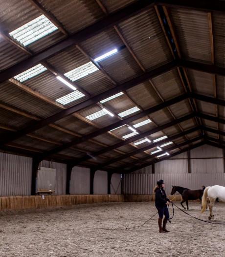 Dier&Recht: Hollandsche Manege behandelt paarden erbarmelijk