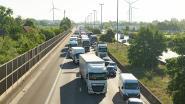 """Ongevallen op E17 rond Gent: """"Niet werfzone maar coronacrisis (met vooral meer vrachtverkeer en snelle trucks) treft schuld"""""""