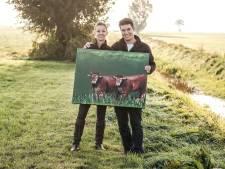 Van koe naar kwaliteitskroket in Toldijk