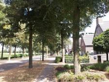 Bomenkap in Venhorst gaat door
