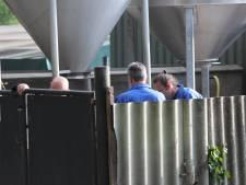 Duizenden nertsen vergast bij eerste ruiming: 'Een spandoek verandert hier niks meer aan'