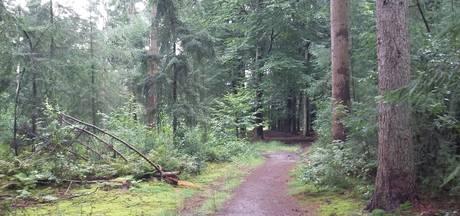 Buurtcomité Wieksloot in verzet tegen natuurbegraafplaats