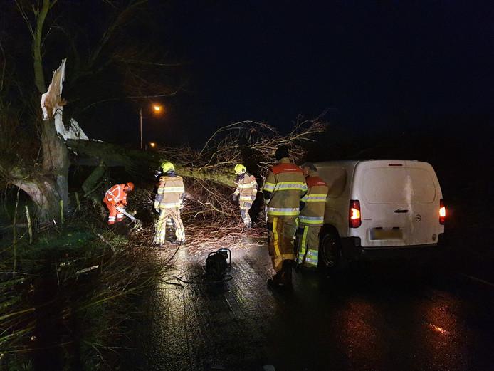In het Gelderse Afferden viel een boom op een rijdende auto door storm Dennis.
