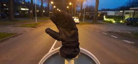 Handschoen zoekt hand: de weeshandschoenen van Tilburg en omgeving op een rij