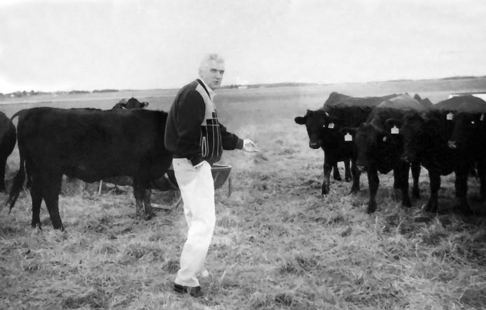 Harry Bolscher koos voor het ras Black Angus: 'lekker en lief'
