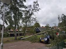 Schade in Vriezenveen: 'Van 5 bomen in je tuin, naar auto van de buren in puin'
