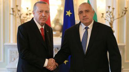 """Erdogan: """"EU-lidmaatschap blijft onze strategische doelstelling"""""""