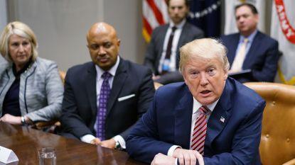 Trump wijst naar videospelletjes en films als oorzaak van wapengeweld