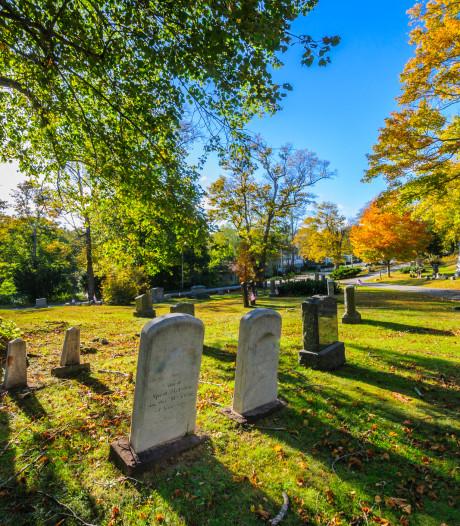 Man uit Steensel stuurt ex foto's van grafstenen