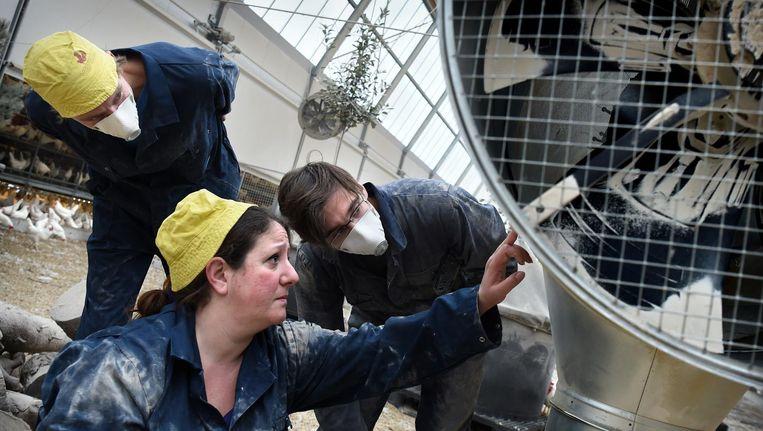 De Israëlische Eliane Khoury studeerde aan de TU Delft en heeft een bedrijf in Schiedam, VFA Solutions, gespecialiseerd in luchtzuivering. Beeld Marcel van den Bergh / de Volkskrant